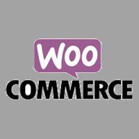 WooCommerce online-Shop Agentur